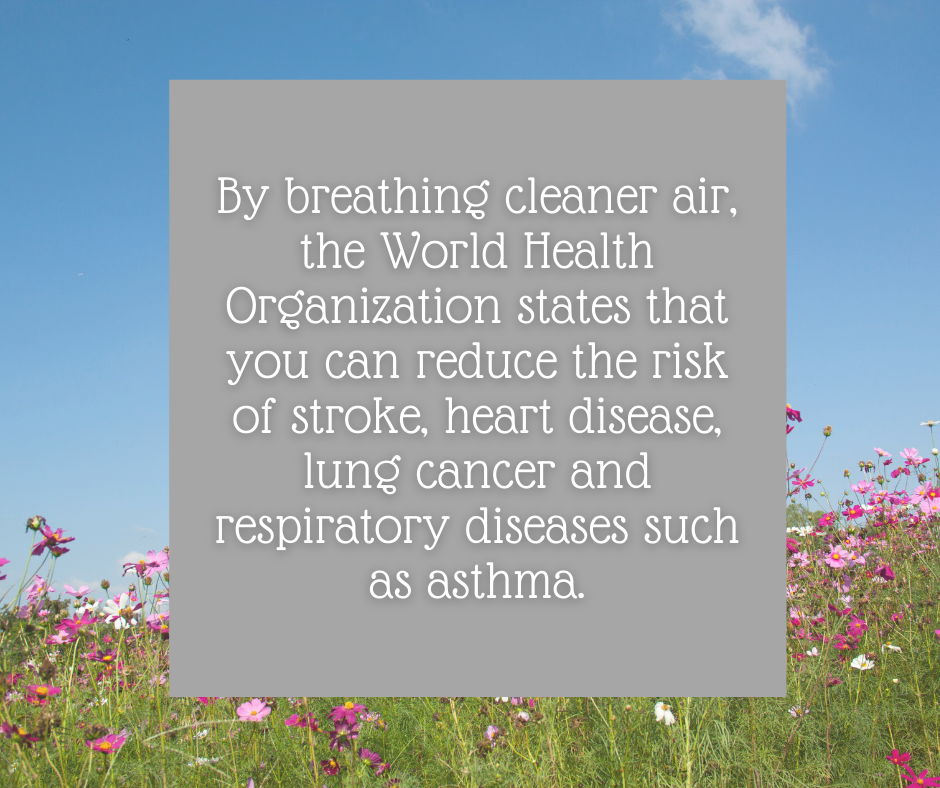 The Importance of Breathing Cleaning Air!